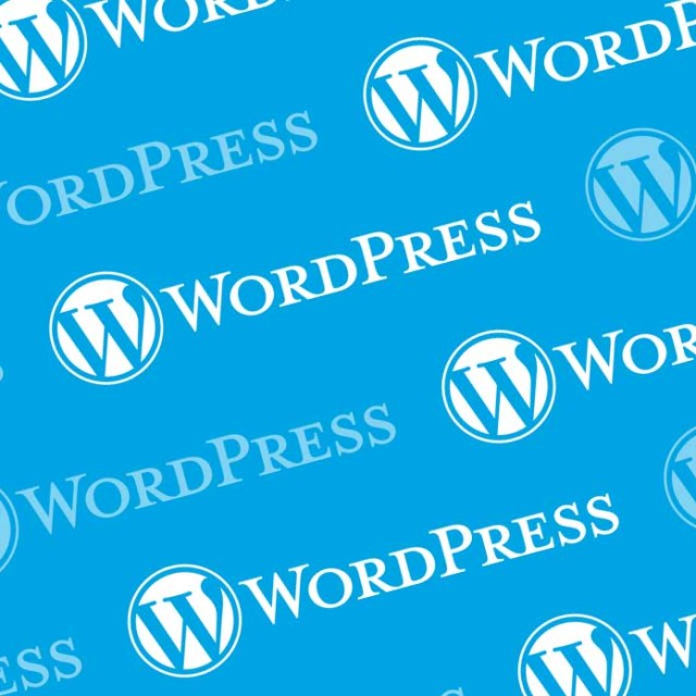 WordPress AutoUpdate fix for Version Controlled Sites